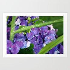 Drops 01 Art Print
