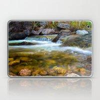 Forest Pool Laptop & iPad Skin