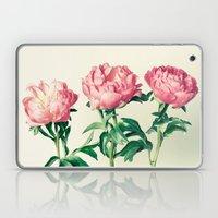 Peony No. 3 Laptop & iPad Skin