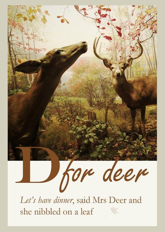 D for Deer Art Print