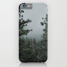 Backwoods Winter: Ponderosa Pines, Washington iPhone 6 Slim Case