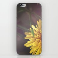 Last Dandelion iPhone & iPod Skin