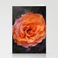 Holland Park Rose Stationery Cards