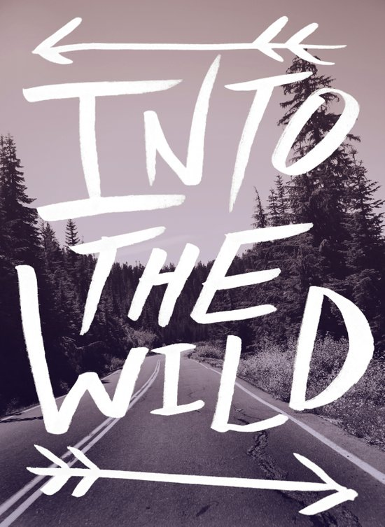 Into the Wild Canvas Print