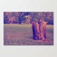 Tree Stump Canvas Print
