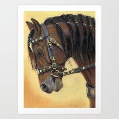 Horse - Portrait Art Print