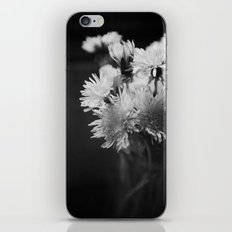 Simple Beauty iPhone & iPod Skin