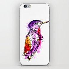 Fuchsia Hummingbird iPhone & iPod Skin