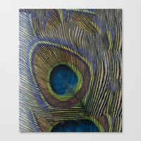 One Of A Feather. Canvas Print