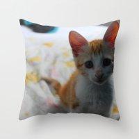 ORANGE CAT. Throw Pillow