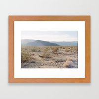 Panamint Valley Coyotes Framed Art Print