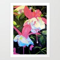 Fushcia Function Art Print