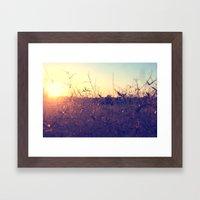 Evening in Summer Framed Art Print