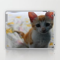 ORANGE CAT. Laptop & iPad Skin