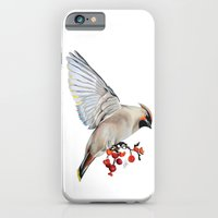 iPhone & iPod Case featuring Waxwing by Libby Watkins Illustration