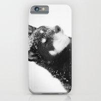 Shiba iPhone 6 Slim Case