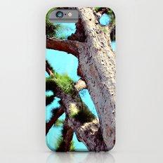 The Tree iPhone 6 Slim Case