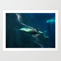 SanJose waters. Art Print