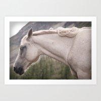Sleeping Horse Art Print