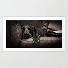 Black Labrador Asleep Art Print