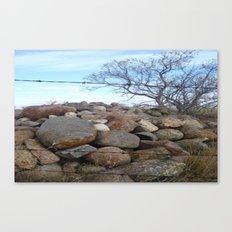 Tree and Rocks Canvas Print