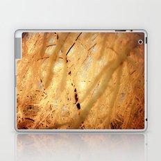 Winters Dark Path Laptop & iPad Skin