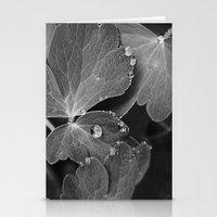 Black & White Spring  Stationery Cards