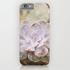 SOLO SUCCULENT  iPhone 6 Slim Case