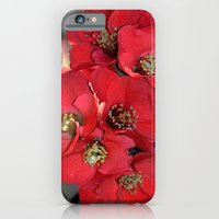 Carmine iPhone 6 Slim Case