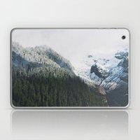 Mount Rainier Winter Val… Laptop & iPad Skin
