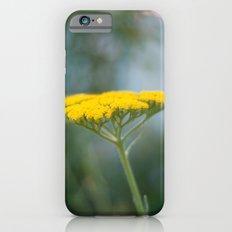 Yarrow IV iPhone 6 Slim Case