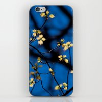 Leaves Of Spring iPhone & iPod Skin