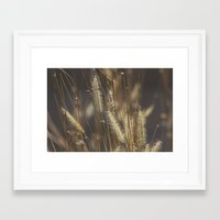 Blowing in the wind. Framed Art Print