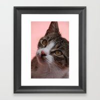 Stray Framed Art Print