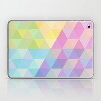 Fig. 027 Laptop & iPad Skin