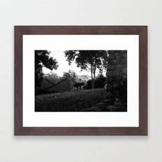 Balinese monkey ascending slope Framed Art Print
