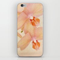 Orchid Falls iPhone & iPod Skin