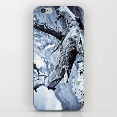 Nature dry. iPhone & iPod Skin