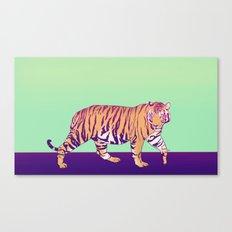 Tiger Under the Sun Canvas Print