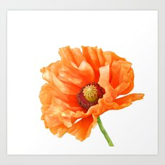 Perfect Poppy Art Print