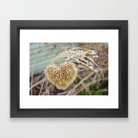 Hearts of Yarrow Framed Art Print