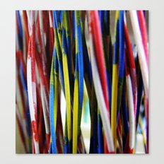 wired3 Canvas Print