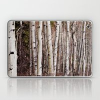 Winter Aspen Laptop & iPad Skin
