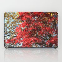 Fall maple trees of red leaves, in blue sky.  nature landscape photography. iPad Case