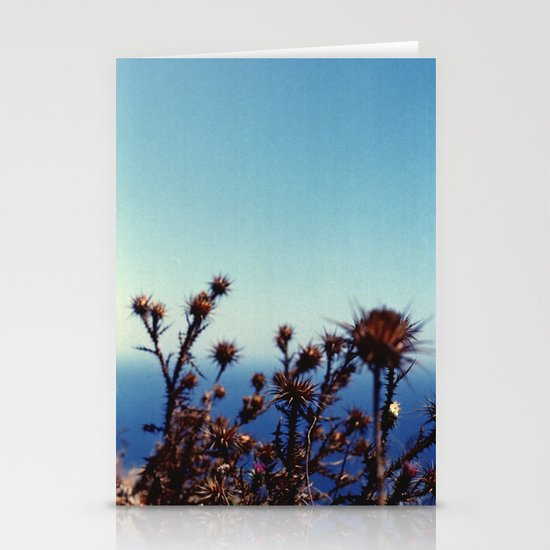 Sun-Bleached Blossom Stationery Card