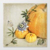 pumpkin & passiflora Canvas Print