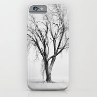 iPhone Cases featuring Tree in the Snow by Evan Smith