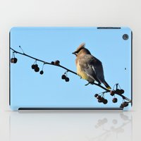 Waxwing On A Winter's Da… iPad Case