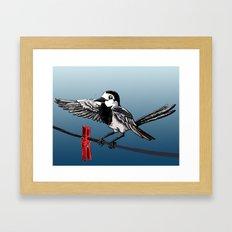 White Wagtail Framed Art Print