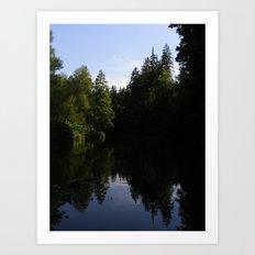 Nature reflecting itself Art Print